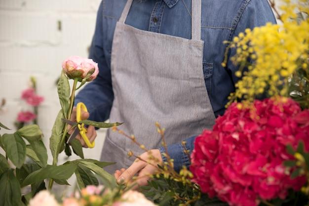 Close-up van een mens die het blad van roze pioenbloem snijdt met schaar