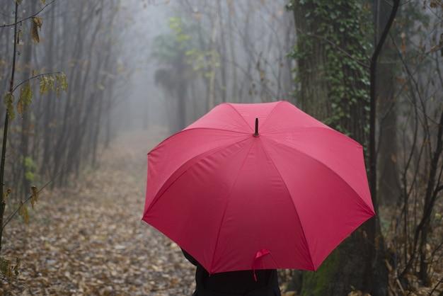 Close-up van een persoon met een rode paraplu die in een beboste steeg op een mistige dag loopt