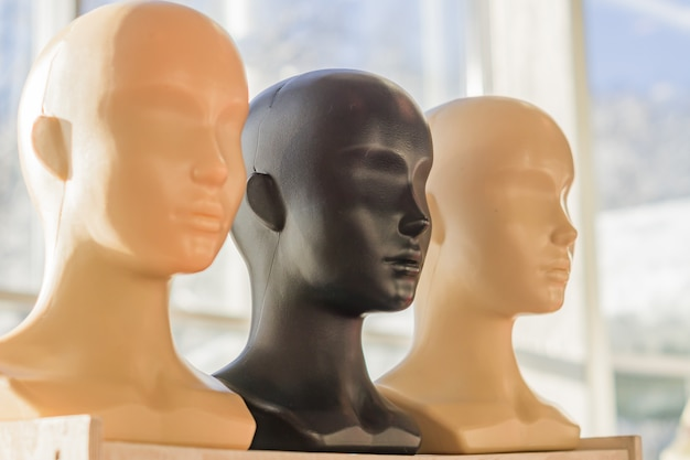 Close-up van een plastic hoofden van de vrouwenledenpop op houten rek.