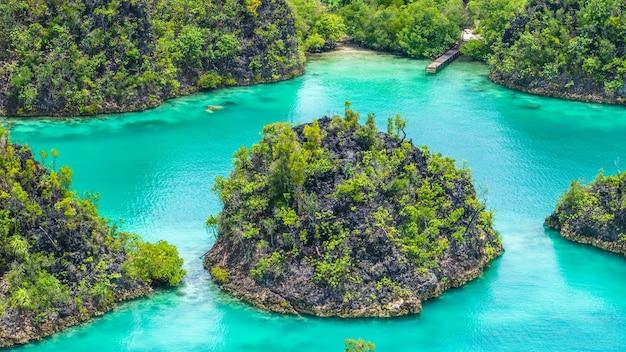 Close-up van een rock island in painemo, raja ampat, west-papoea, indonesië.