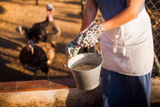 Close-up van een vrouw voedende kippen