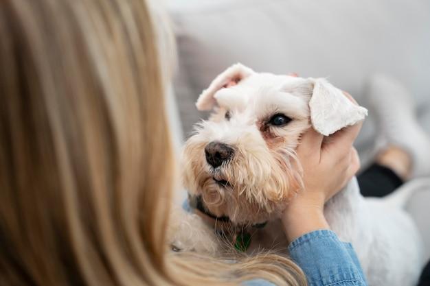 Close-up van eigenaar die het hoofd van de hond vasthoudt