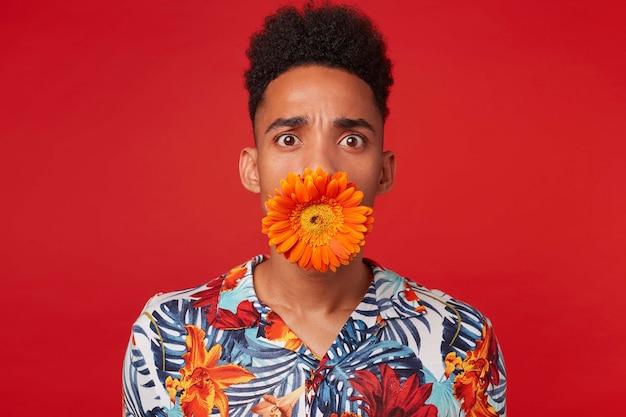 Close-up van geschokte jonge donkere man in hawaiiaans overhemd, kijkt naar de camera met verbaasde uitdrukking, met een bloem in zijn mond, staat op rode achtergrond.