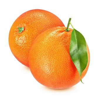 Close-up van grapefruits met blad