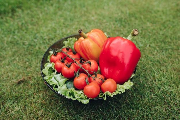 Close-up van groenten die op plaat op gras liggen