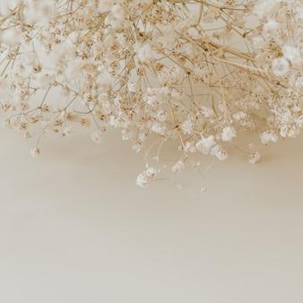 Close-up van gypsophila bloemen boeket op neutraal beige
