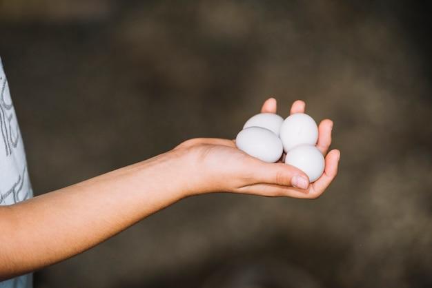 Close-up van hand die witte eieren in de hand houdt