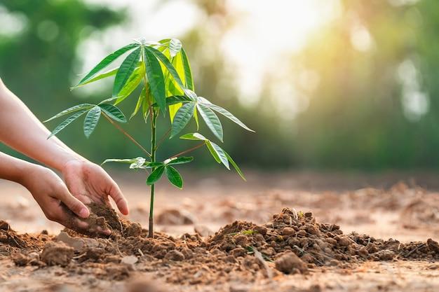 Close-up van handkinderen die boom in de tuin planten om de wereld te redden. eco milieu concept