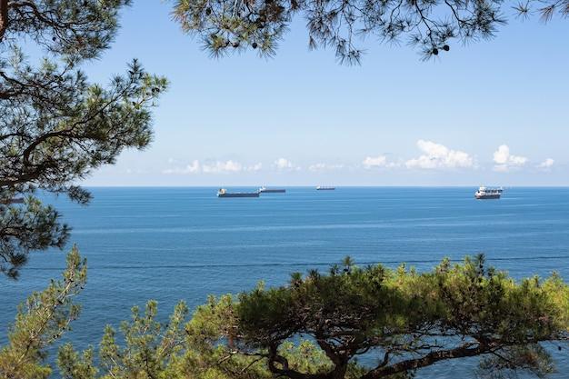 Close-up van het zomerlandschap. blauwe zee, wolken boven de horizon en vrachtschepen