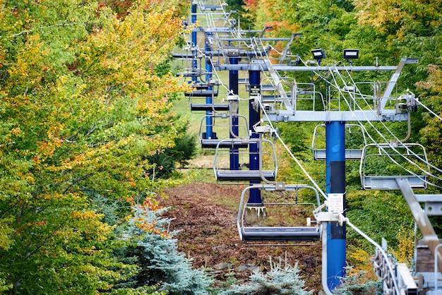 Close-up van kabelbanen in een bos