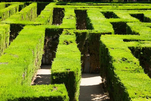 Close-up van labyrint in parc del laberint
