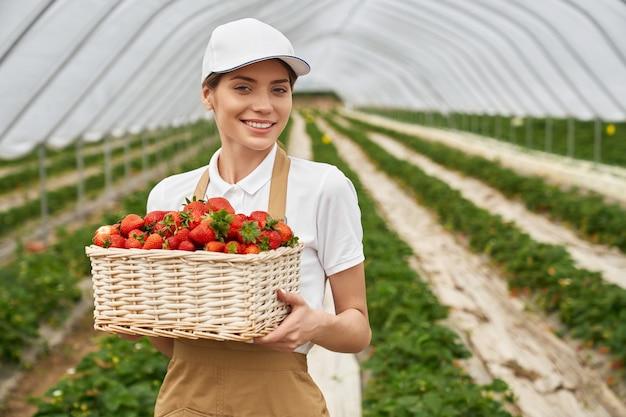 Close up van lachende mooie vrouw in beige schort met biologische, sappige grote rode aardbeien in rieten mand. concept van rijpe smakelijke aardbei in kas.