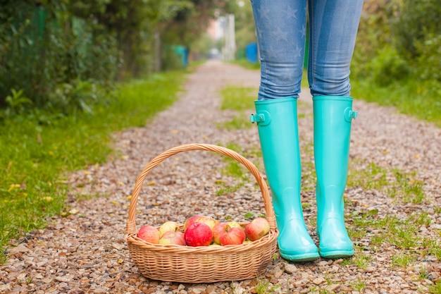 Close-up van mand met gele, rode appels en rubberen laarzen op een jong meisje