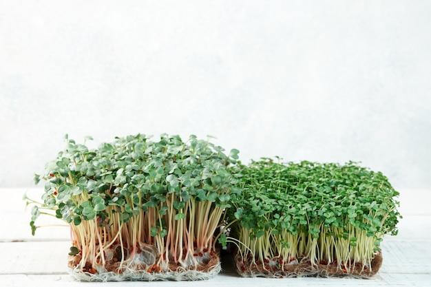 Close-up van microgroene broccoli en radijs groeien op een linnen mat