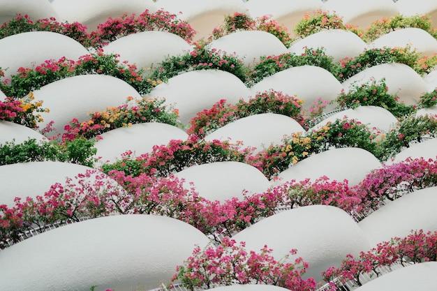 Close-up van mooi bloemstuk met geometrische vormen
