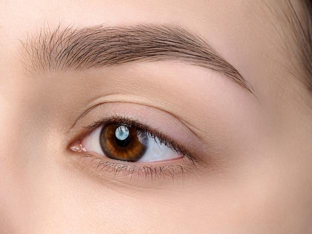 Close-up van mooi bruin vrouwelijk oog met perfecte trendy wenkbrauw