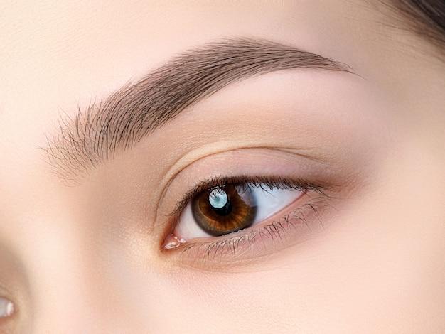 Close-up van mooi bruin vrouwelijk oog. perfecte trendy wenkbrauw. goed zicht, contactlenzen, wenkbrauwbalk of fashion wenkbrauwmake-up concept