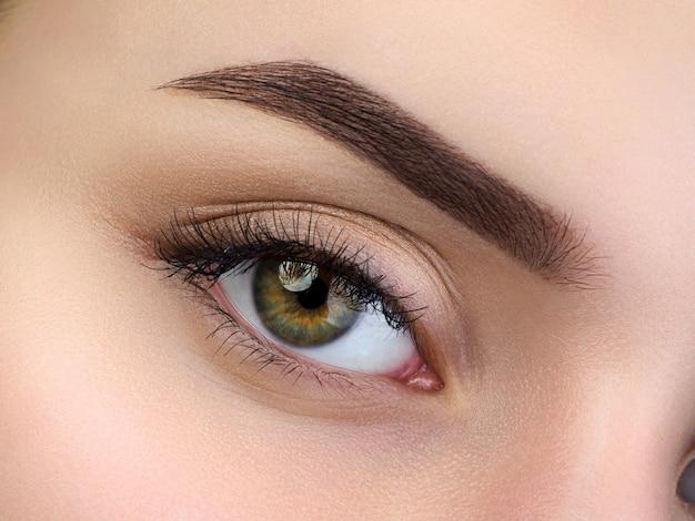 Close-up van mooi bruin vrouwelijk oog. perfecte trendy wenkbrauw. goed zicht, contactlenzen, wenkbrauwbalk of mode-concept voor wenkbrauwmake-up