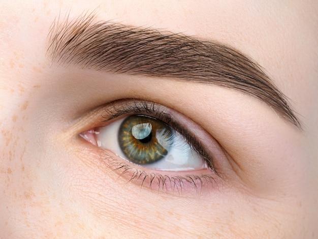 Close-up van mooie groene vrouwelijke oog. perfecte trendy wenkbrauw. goed zicht, contactlenzen, wenkbrauwbalk of fashion wenkbrauwmake-up concept