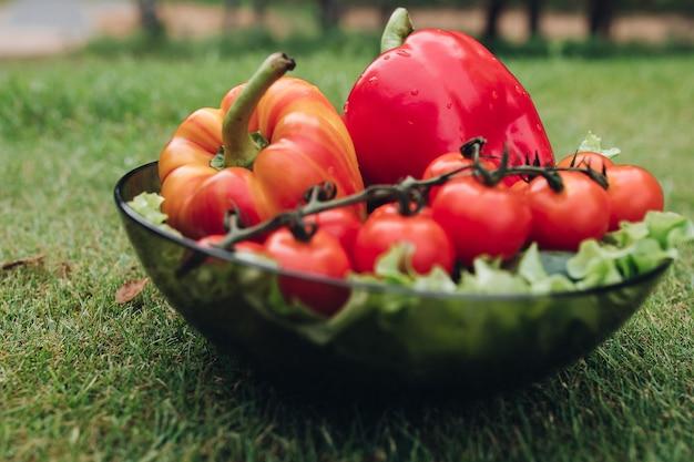 Close-up van natte verse groenten die op plaat op gras liggen. gezonde rode tomaten, lekkere paprika's, komkommers en groene sla in de tuin. concept van versheid en zomervoedsel.