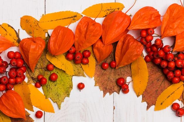 Close-up van oranje physalis, gele bladeren, rode rowan bessen op witte tafel. plat lag, bovenaanzicht. herfst