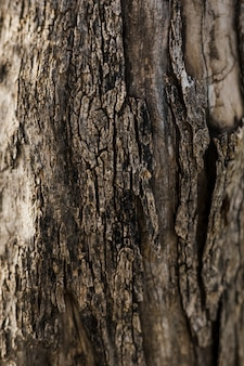 Close-up van oud hout geweven