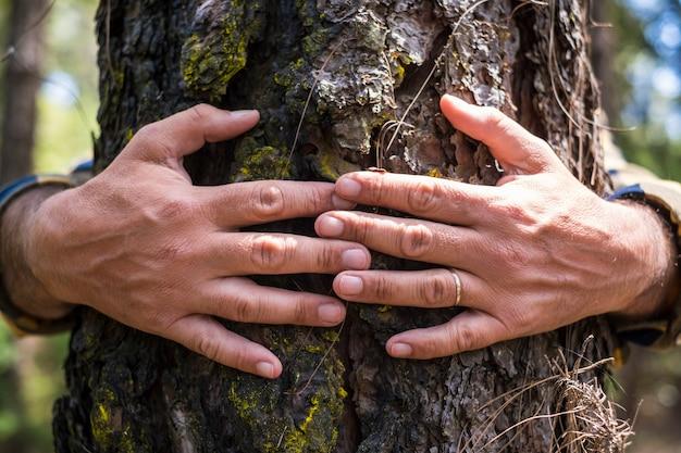 Close up van oude man handen omarmen een dennenboom in het bos - mensen en milieu redden de planeet geen ontbossing concept levensstijl rechten - help de natuur en de aarde voor de toekomst