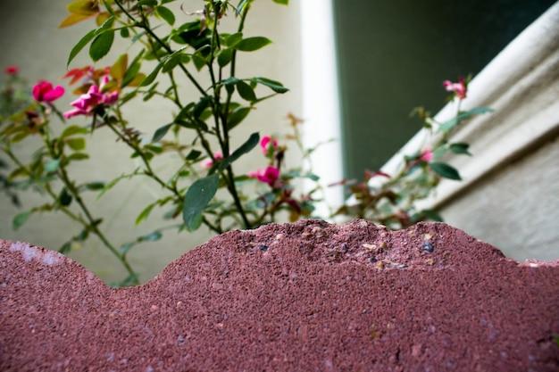 Close-up van rode baksteen met rozen op de achtergrond