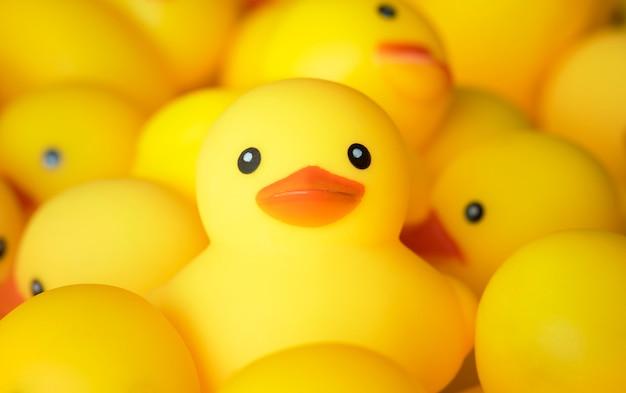 Close-up van rubber duckies