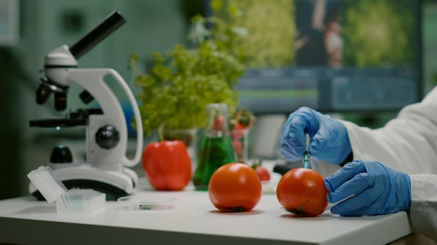 Close-up van scheikundige wetenschapper die biologische tomaat injecteert met pesticiden voor ggo-test