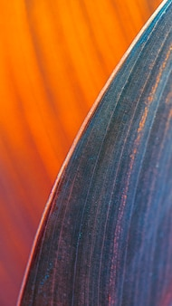 Close-up van sigaarbloembladeren mobiel behang