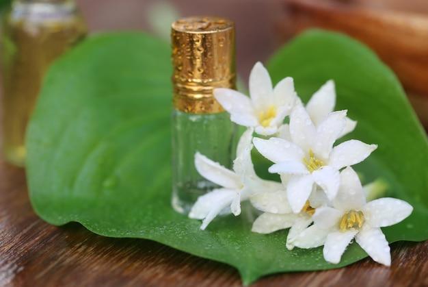 Close up van tuberoos of rajnigandha van zuidoost-azië met kruidenextract