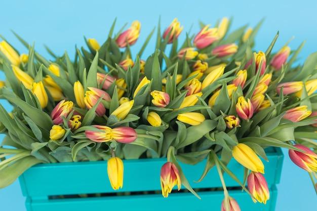 Close-up van turquoise houten doos met gele tulpen op blauw