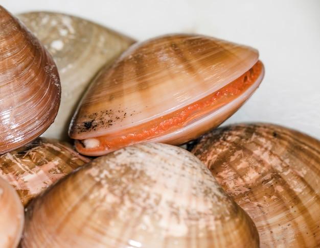 Close-up van tweekleppige schelpdieren bij markt
