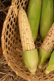 Close up van verse biologische suikermaïs in mand
