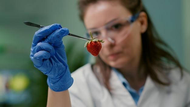 Close up van wetenschapper vrouw kijken naar biologische aardbei met behulp van medische pincet