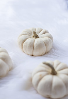 Close-up van witte pompoenen