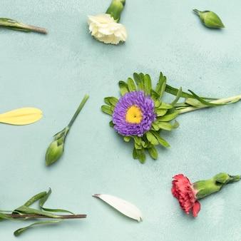 Close-upachtergrond met madeliefjes en anjerbloemen