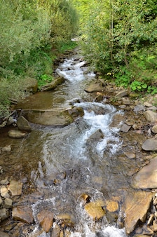 Close-upbeeld van een kleine wilde waterval in de vorm van korte stromen water tussen bergstenen