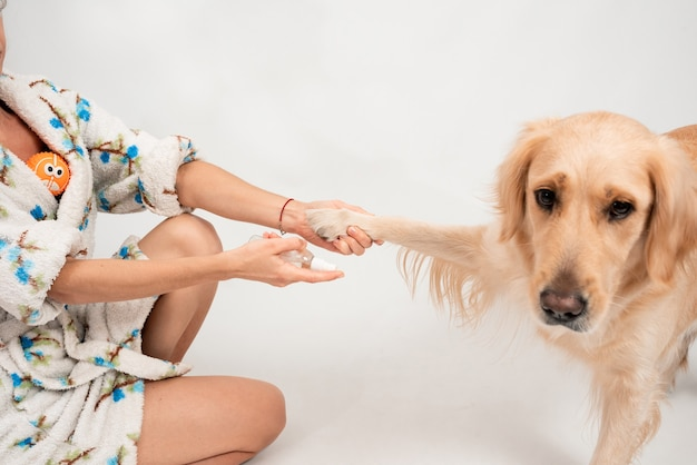 Close-upbeeld witte golden retriever vrouwelijke vrouw desinfecteert hondenpoten met een ontsmettingsmiddel