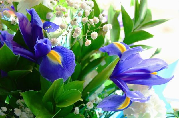 Close-upboeket van verse bloemen van blauwe irissen met gele bloemblaadjes en groene stammen