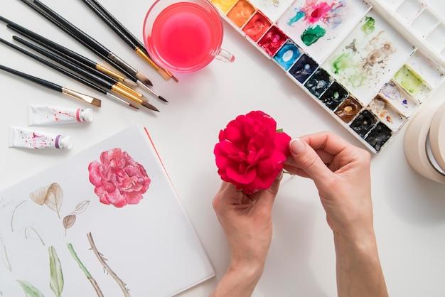 Close-uphand die mooie bloem houden