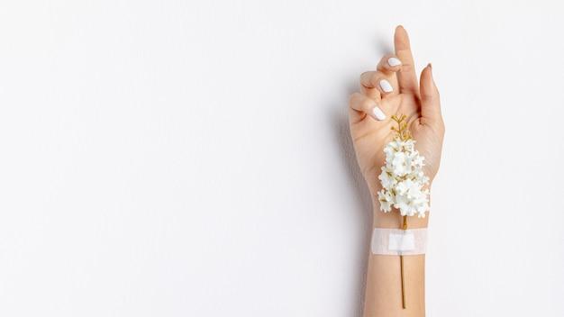 Close-uphand met bloem en exemplaar-ruimte