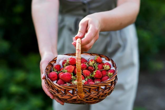 Close-uphanden die aardbeienmand houden