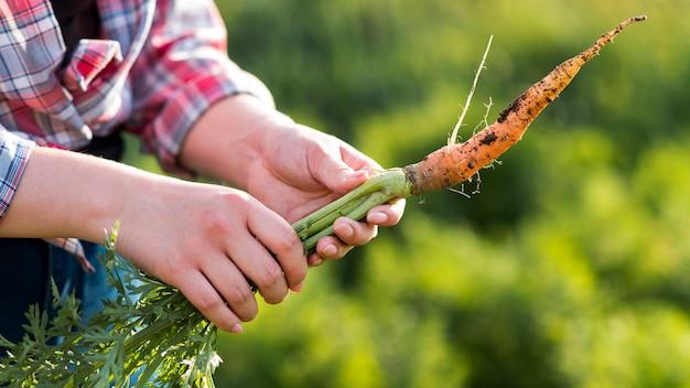 Close-uphanden die wortel houden