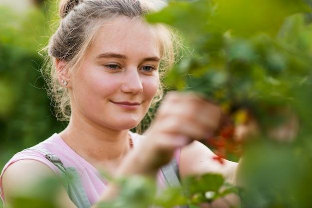 Close-upmeisje het plukken vruchten