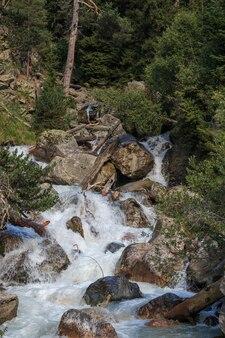 Close-upmening van rivierscènes in bos, nationaal park dombay, kaukasus, rusland, europa. zomerlandschap, zonnig weer en zonnige dag
