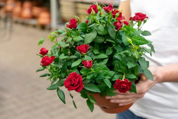 Close-upmens die elegante bloemen houden