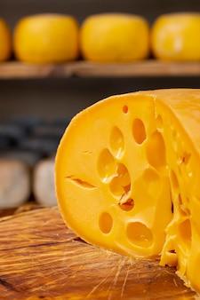 Close-upplak van smakelijke zwitserse kaas