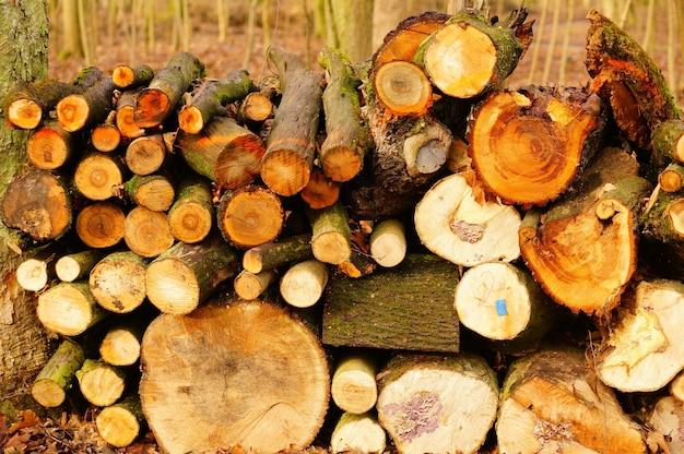 Close-upschot van gehakt firewoods - het concept van het aardmisbruik